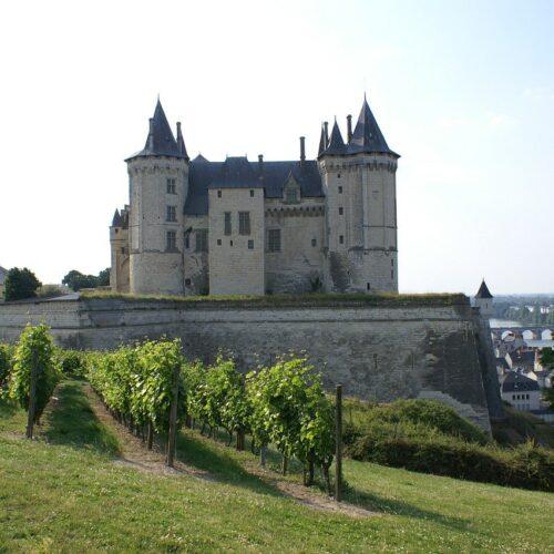 Le Château de Saumur à 50km
