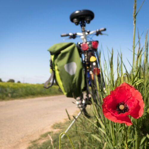 La Foutelaie, une étape vélofriendly