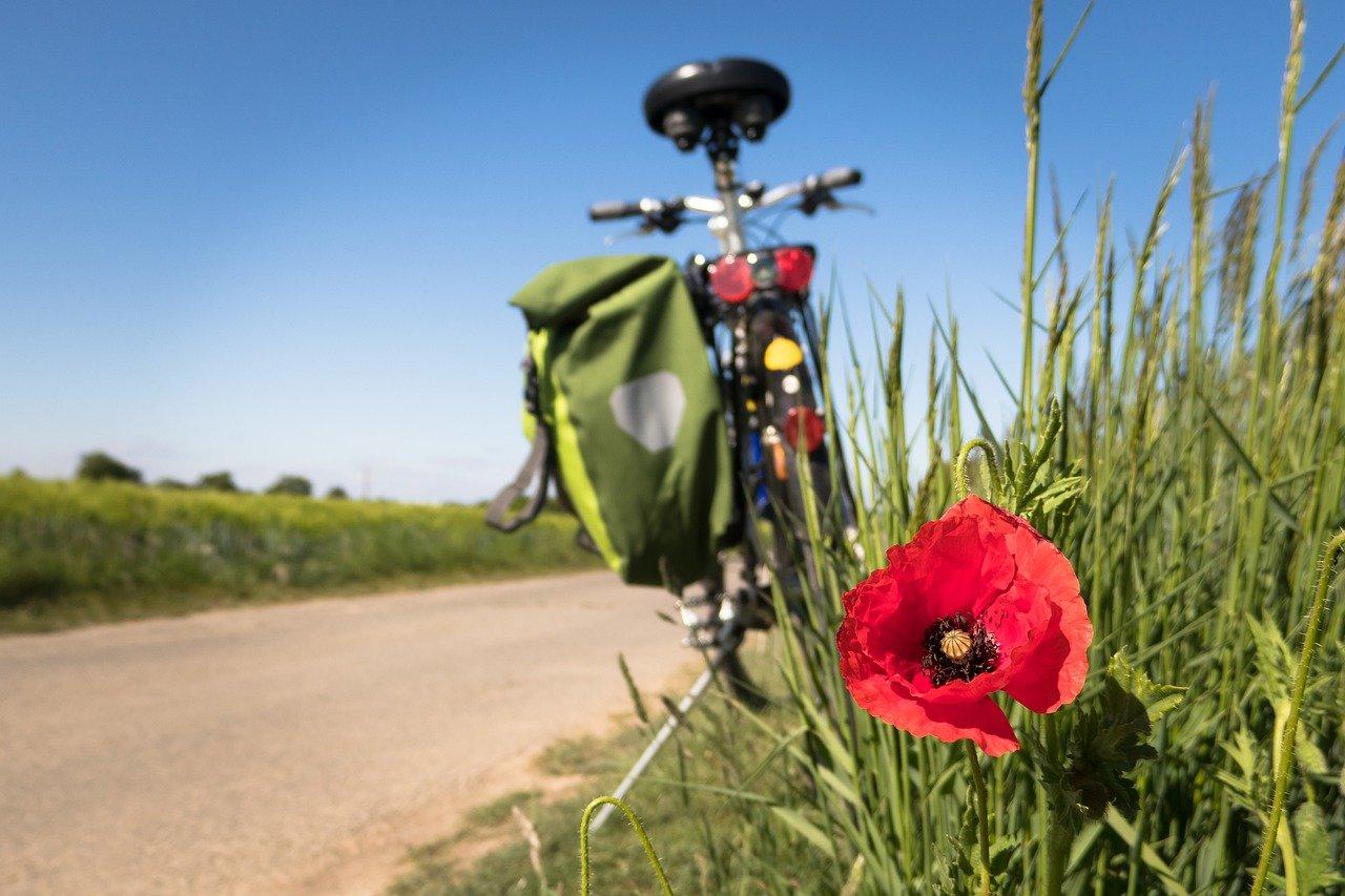 L'été en vélo à la Foutelaie